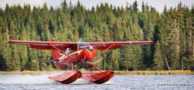 Homer-Alaska-floatplane-charter