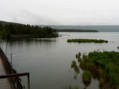 Plan your Alaskan floatplane adventure with Steller Air in Homer, Alaska.