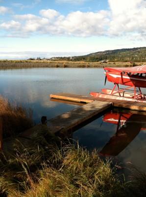 Plan your Alaskan floatplane adventure with Steller Air in Homer, Alaska