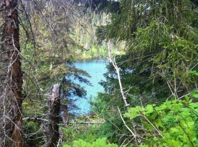 Two Loon Lake, Fly-Hike-Boat, China Poot Trail, Homer, Alaska