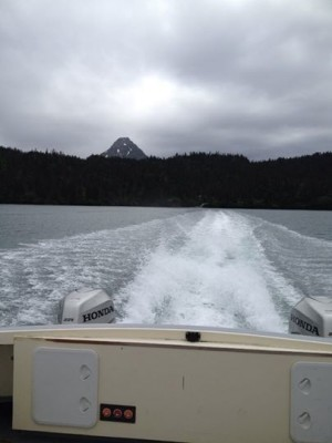 Mako's Water Taxi, Katchemak Bay State Park, Homer, Alaska, Fly-Hike-Boat