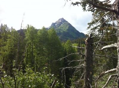 China Poot Peak, Homer, Alaska, Katchemak Bay State Park